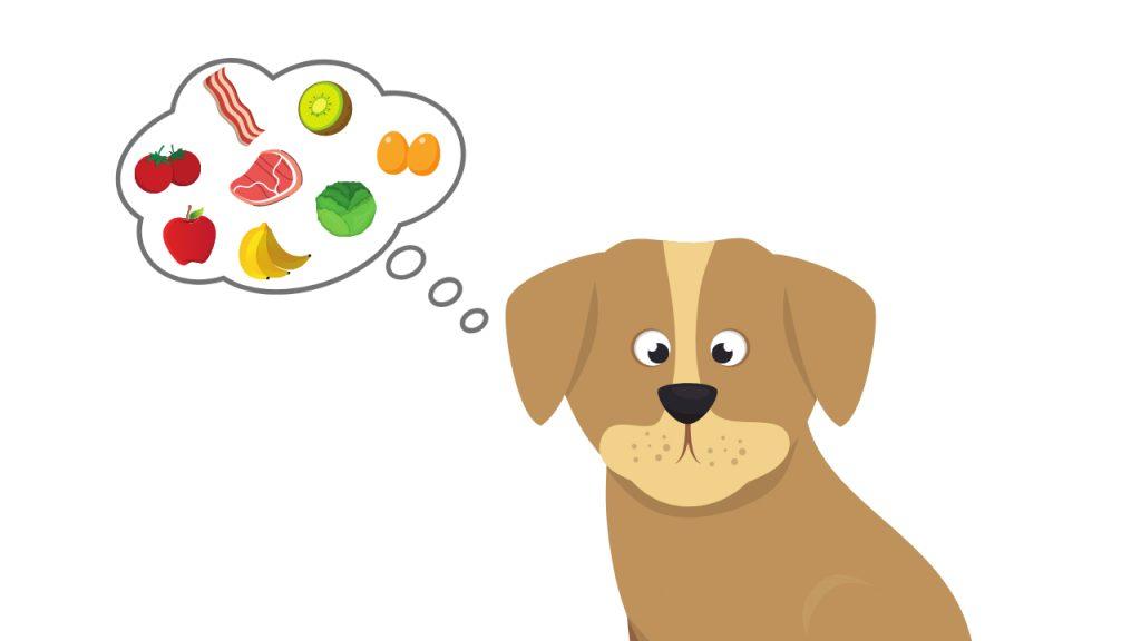 aliments toxiques chien autorises