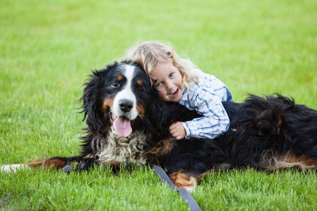 chien pour enfant