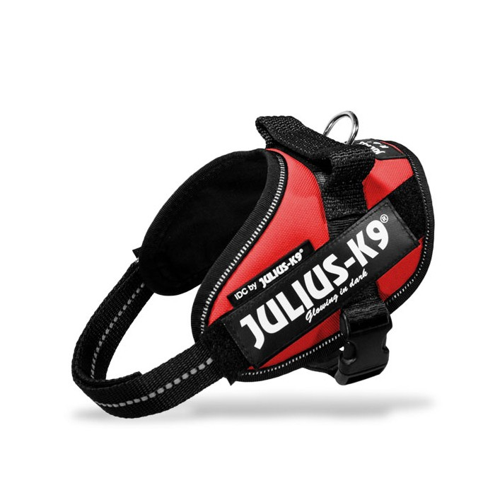 Julius K9 Harnais IDC Power Drapeau Rouge