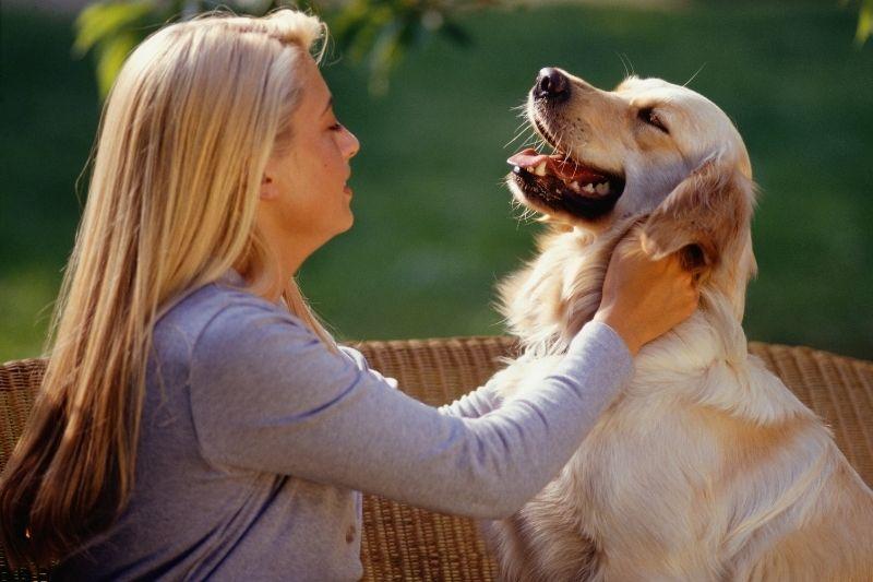 how do I tell my dog I love him