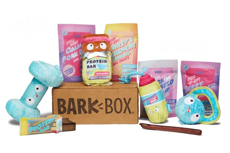 barkbox content
