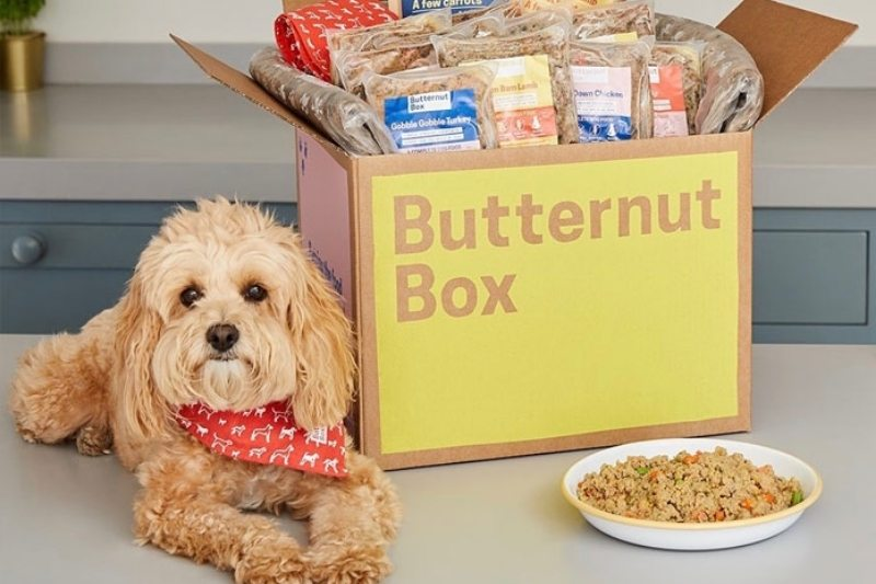 best refrigerated dog food butternut box