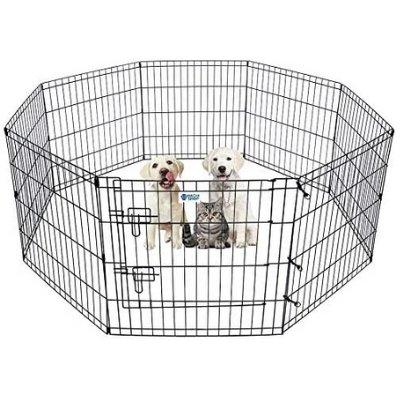 hachi shop dog fence