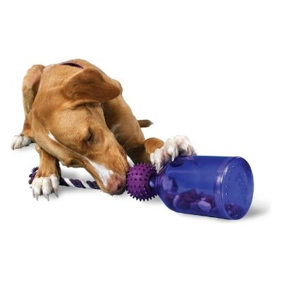 busy buddy dog chew toy