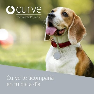 curve collar gps perro